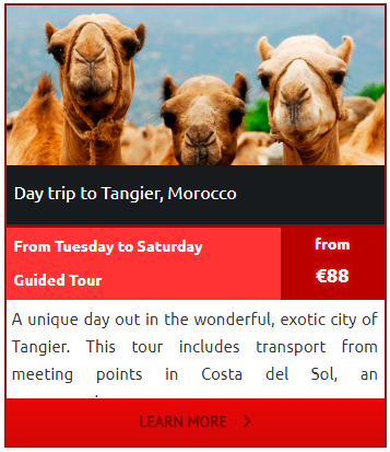 Day-Trip to Tangier-from-Marbella