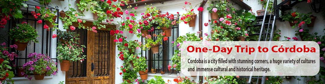 one-day-trip-to-cordoba-from-malaga-and-costa-del-sol-SLIDER
